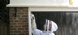 treating a large active wasp nest